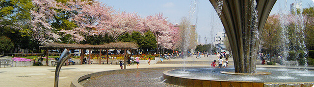 赤塚公園,都内,お花見,バーベキュー