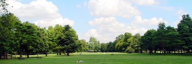 野川公園,都内,お花見,バーベキュー