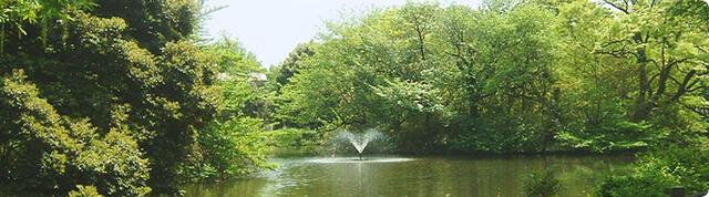 和田堀公園,都内,お花見,バーベキュー