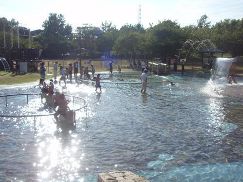 元浜緑地わんぱく池,