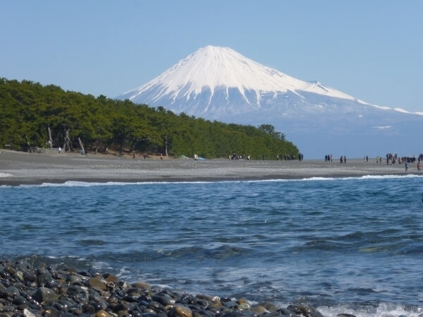 富士山と三保松原,久能,いちご狩り,