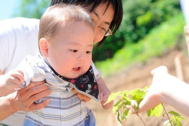 自然に触れる赤ちゃん,赤ちゃん,誕生,記念