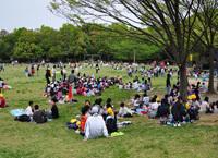花畑園芸公園芝生,福岡,植物園,おすすめ