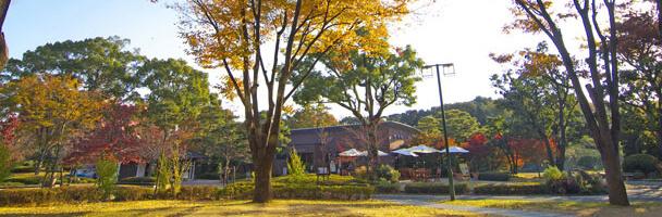 石橋文化センターカフェ,福岡,植物園,おすすめ