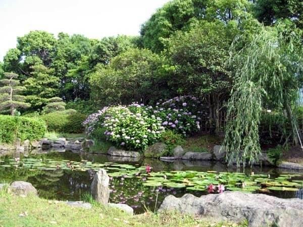 福岡県緑化センター,福岡,植物園,おすすめ