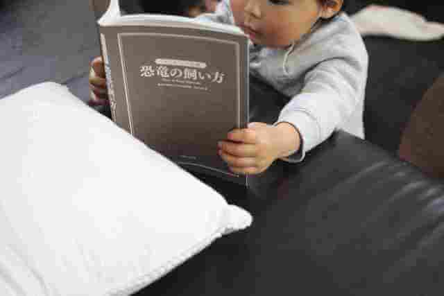 オリジナル図鑑を読む男の子,恐竜,図鑑,