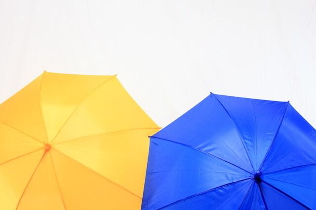 子どもの雨傘,子ども,傘,