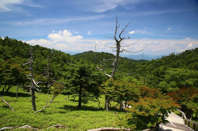 大台ケ原山,奈良,山登り,