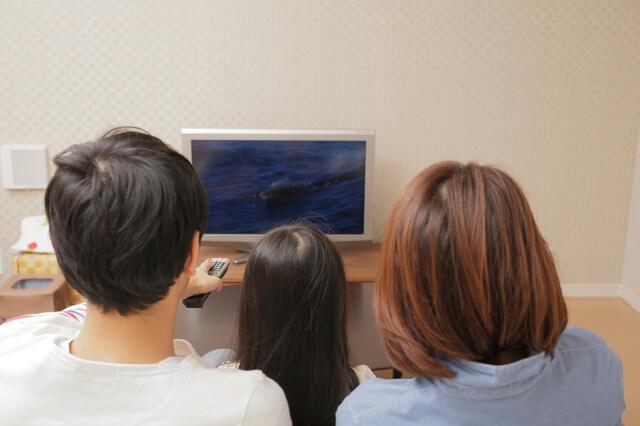 テレビを見る親子,バイリンガル,英語,育児