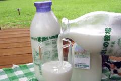 自家製の牛乳,まかいの牧場,