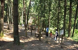 大亀山森林公園アスレチック,宮城,アスレチック,子ども