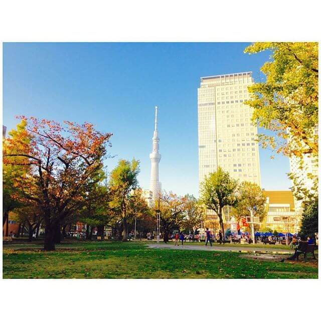 錦糸公園,ピクニック,公園,東京