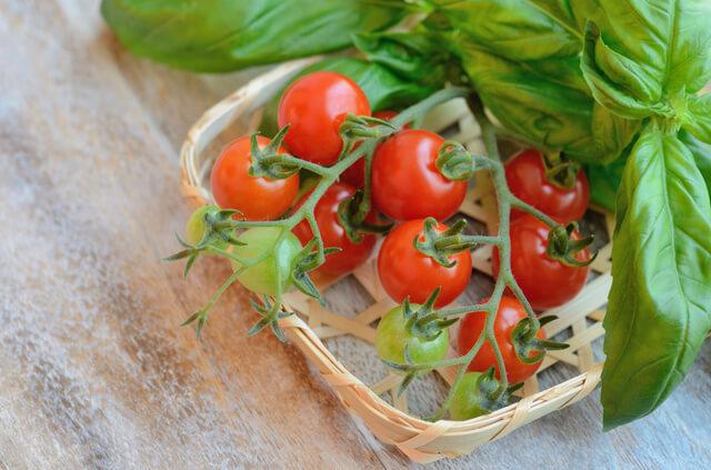 野菜 プランター トマト おすすめ 夏 時期,プランター,野菜,