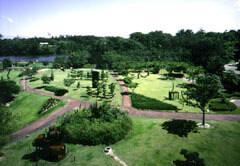 大池公園,大池公園,東海市,