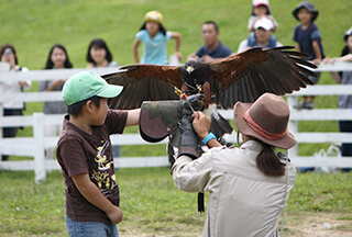 こども応援プロジェクト 西武 長井海の手公園 ふれあい動物村 バードショー,おでかけ,体験,