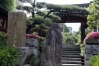 大巧寺,神奈川県,安産祈願,神社