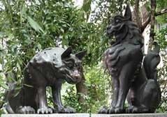 稲毛神社の狛犬,神奈川県,安産祈願,神社