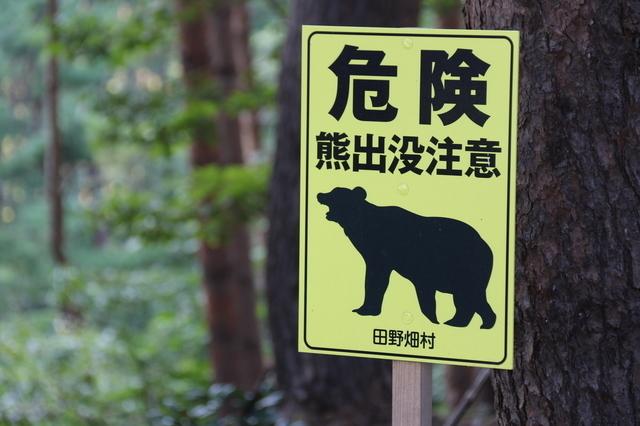 クマ注意,キャンプ,遊び,