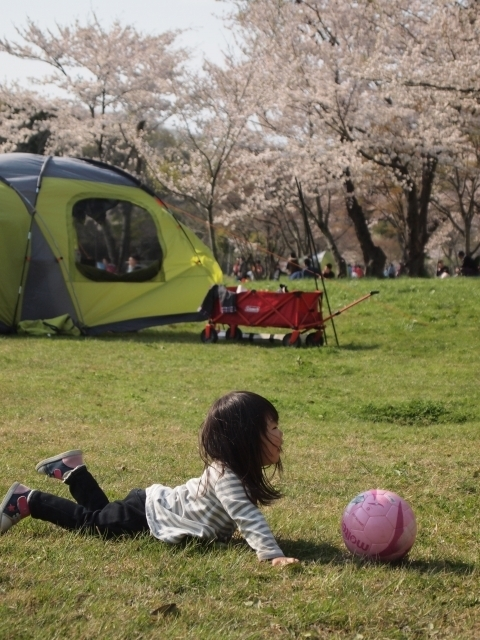 原っぱ ボール 子 キャンプ,キャンプ,遊び,