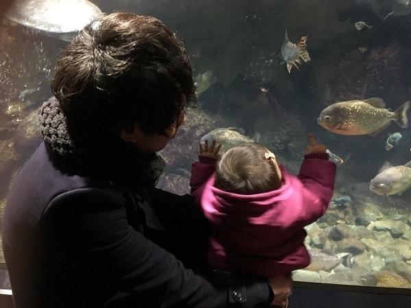 赤いパーカーを着た赤ちゃん,大阪,水族館,海遊館