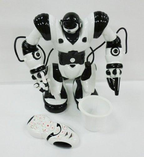 Roboactor(ロボアクター) (二足歩行ロボットラジコン),ラジコン,おすすめ,