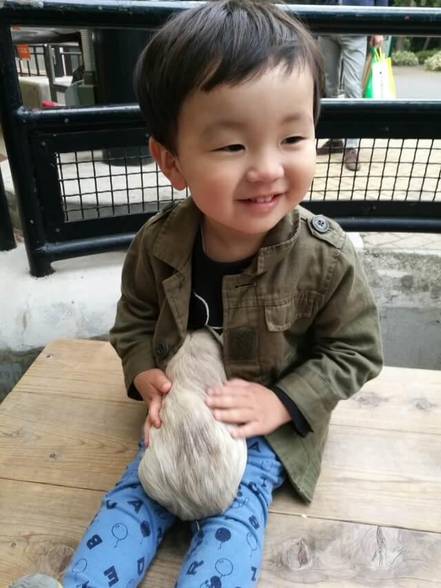 うさぎを抱く子ども,フォトコンテスト,動物園,結果