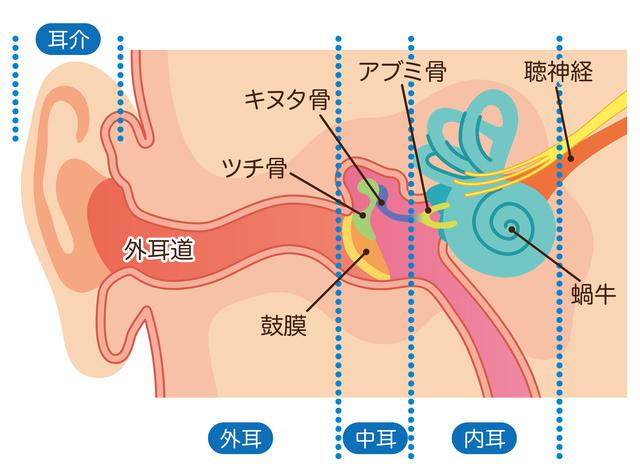 中耳炎の説明イメージ,中耳炎,赤ちゃん,