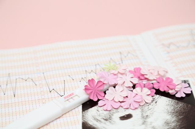 妊娠超初期の基礎体温表,妊娠超初期,めまい,