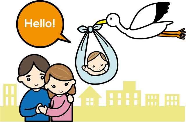 コウノトリ赤ちゃん夫婦,人工授精,妊娠,