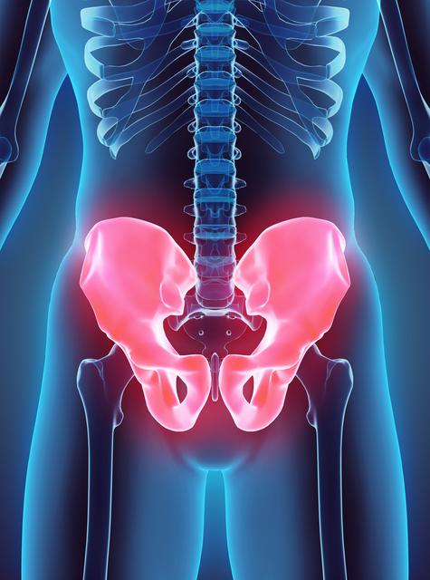 骨盤イメージ,産後,腰痛,