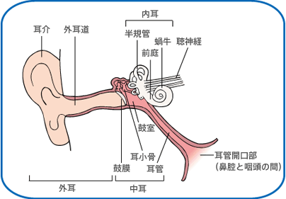 アステラス中耳炎,耳鼻科,赤ちゃん,鼻づまり