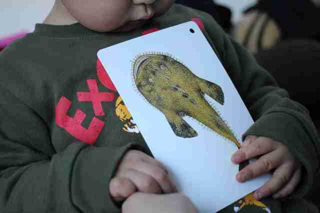 くもん 知育カード「川や海の生きものカード」を持つ子ども,くもん,カード,