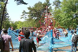 国営武蔵丘陵森林公園の冒険コース,アスレチック,関東,おすすめ