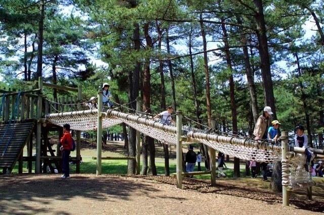 国営ひたち海浜公園の林間アスレチック広場,アスレチック,関東,おすすめ