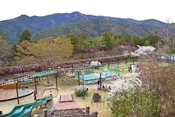 嵐山-高雄パークウエイの観空台遊園地,アスレチック,京都,