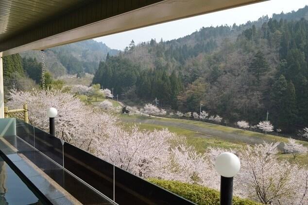 あやべ温泉、仁王の湯,アスレチック,京都,