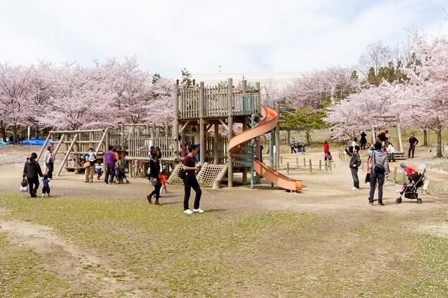 けいはんな記念公園の遊具広場,アスレチック,京都,