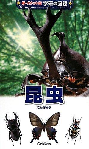 昆虫 (新ポケット版 学研の図鑑),虫,図鑑,
