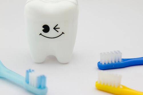 歯に関するFAQ,0歳,予防歯科,ハミガキ
