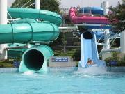 萩中公園プール,東京 ,プール,スライダー