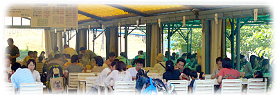 富田林農業公園 サバーファームのバーベキューハウス,大阪,バーベキュー,雨