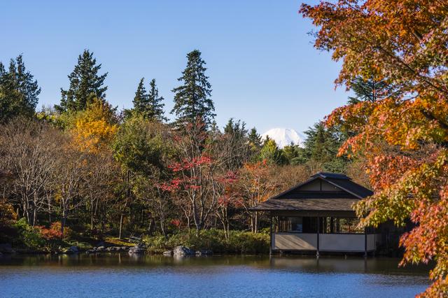 日本庭園,国営昭和記念公園,