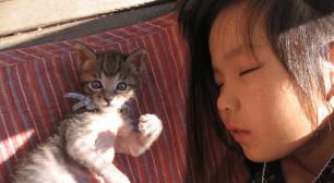 が、専門家からはどんな回答が寄せられたでしょうか。 6歳児のママからの相談:「睡眠時の無自覚な寝言や徘徊について」,子ども,寝言,病院