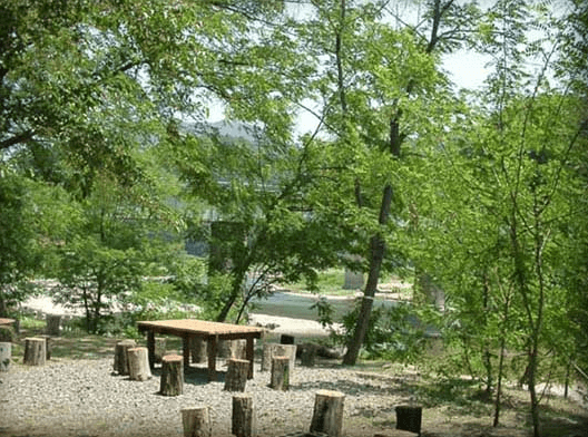 上小川キャンプ場,茨城県,おすすめ,キャンプ場