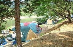 キャンプ村やなせ,茨城県,おすすめ,キャンプ場