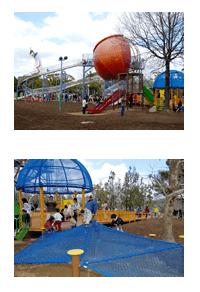 万博記念公園のやったねの木,大阪府,アスレチック,公園