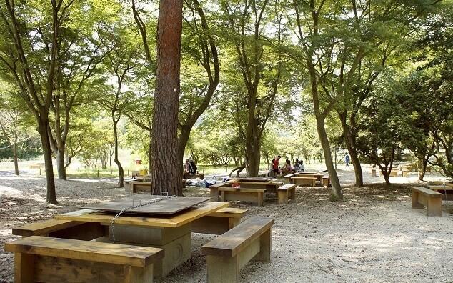 愛知県森林公園 森のバーベキュー湖畔,手ぶら,バーベキュー,愛知県