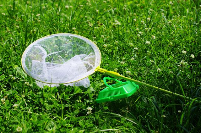 虫取り網・かご,外遊び,子ども,道具