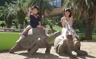 iZoo,動物園,東海,触れ合い