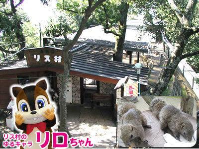 ぎふ金華山 リス村,動物園,東海,触れ合い